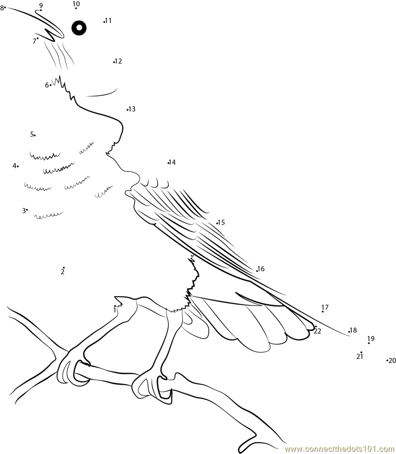 yellowstone coloring pages - photo#26
