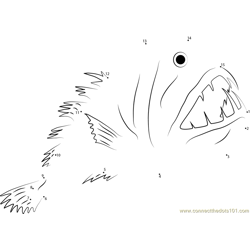 Anglerfish Fangtooth