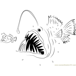 Big Anglerfish Eat Small Anglerfish