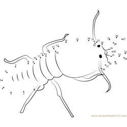 Bigg Ant Dot to Dot Worksheet