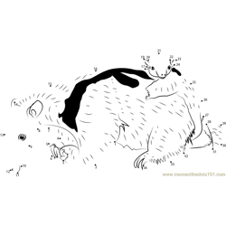 Baby Anteater Hanging on To Mother Dot to Dot Worksheet