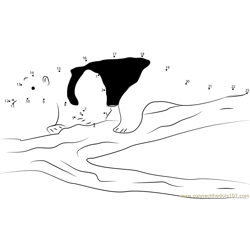 Black Tamandua Anteater Dot to Dot Worksheet