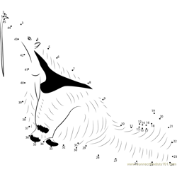 Free Anteater Dot to Dot Worksheet