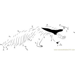 Giant Anteater Running Dot to Dot Worksheet
