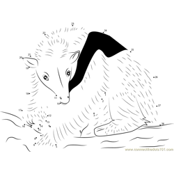 Northern Tanmandua Anteater Dot to Dot Worksheet