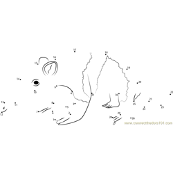 Small Anteater Dot to Dot Worksheet