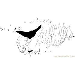 The Mighty Giant Anteater Dot to Dot Worksheet