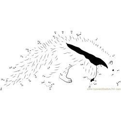 Young Giant Anteater White Black Dot to Dot Worksheet