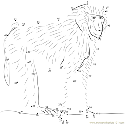 Olive Baboon Dot to Dot Worksheet