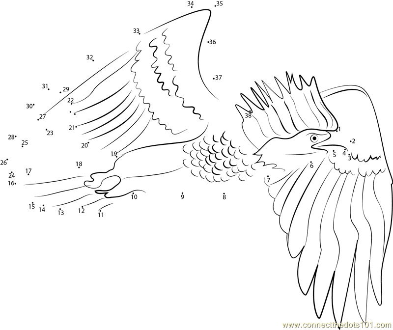 Eagleconnect