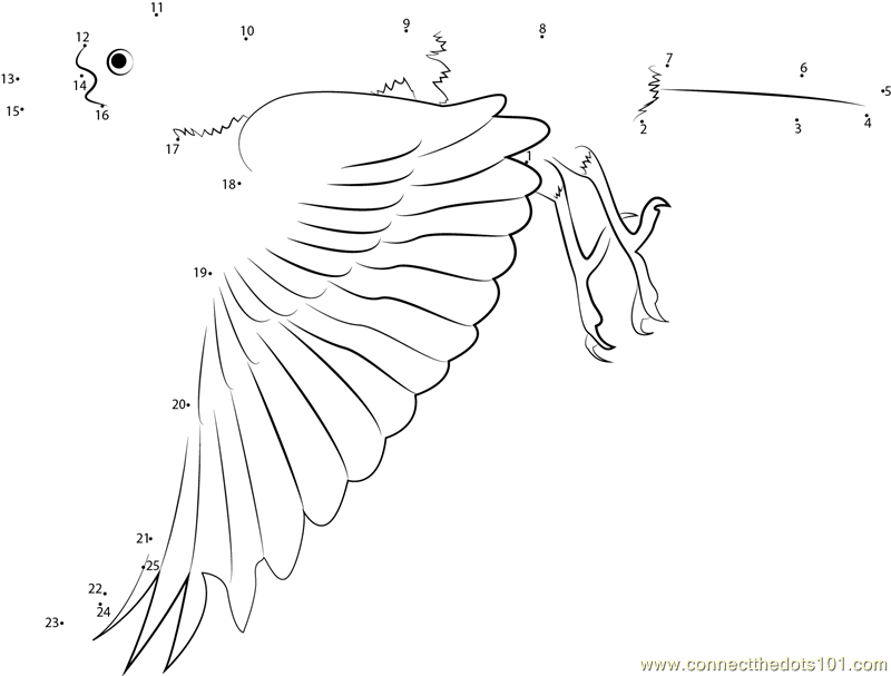 baltimore orioles coloring pages - baltimore oriole in flight dot to dot printable worksheet