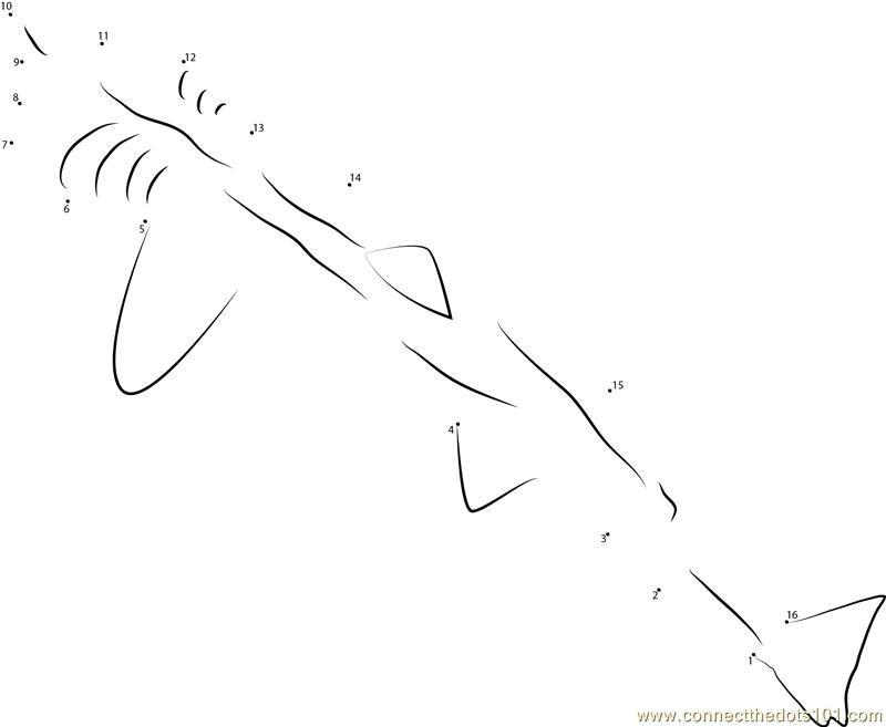 Basking Shark Pickering dot to