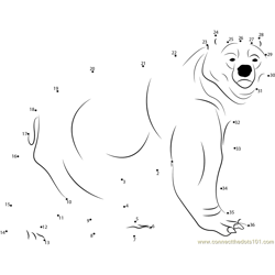 Kodiak Bear Dot to Dot Worksheet