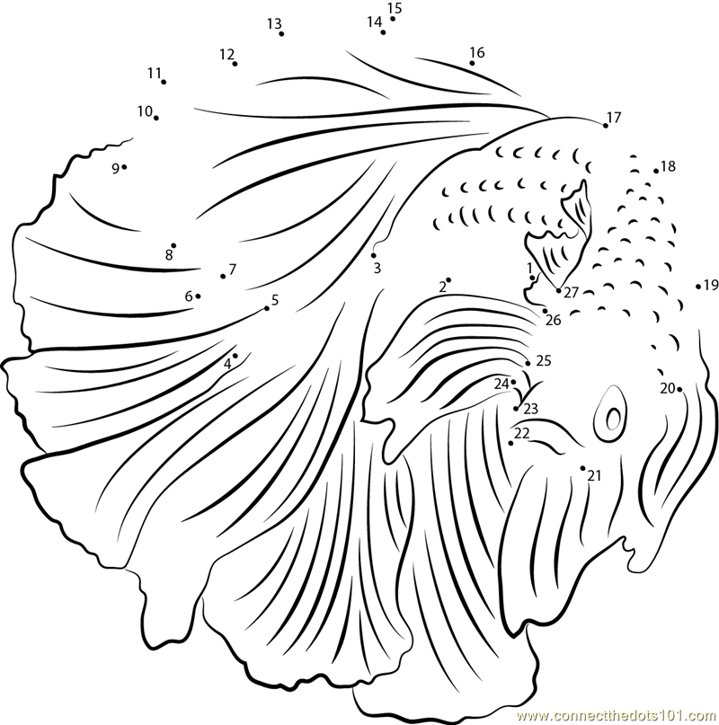 Male And Female Betta Fish Coloring Page Coloring Pages