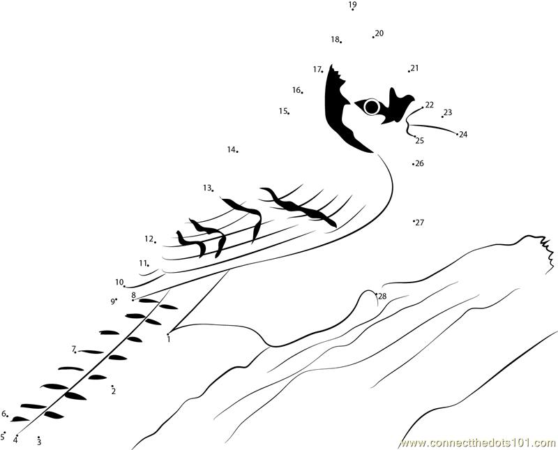 Blue Jay On Tree Branch Dot To Dot Printable Worksheet