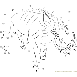 Burrowing Boar Dot to Dot Worksheet