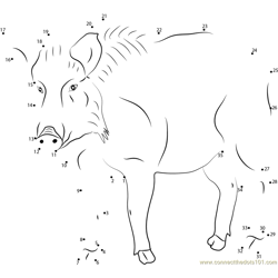 Strong Boar Dot to Dot Worksheet