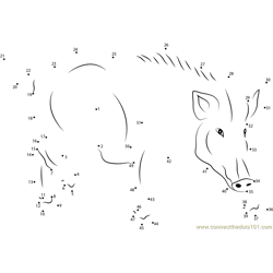 Wild Boar Europe Dot to Dot Worksheet