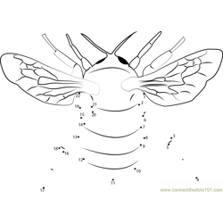 Honey Bumble Bee Dot to Dot Worksheet