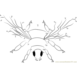 Insect Bumble Bee Dot to Dot Worksheet
