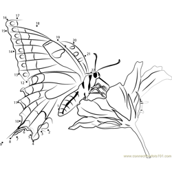 Butterfly on Flower Dot to Dot Worksheet