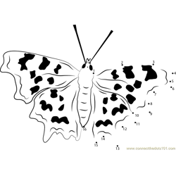 Endangered Butterflies Dot to Dot Worksheet