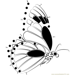 Monarch Butterflies Flying Dot to Dot Worksheet