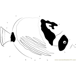 Crescent-masked Butterflyfish Dot to Dot Worksheet