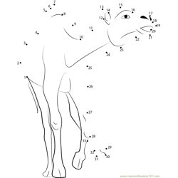 Crazy Camel Running Dot to Dot Worksheet