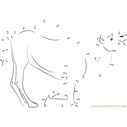 Kneeling Camel Dot to Dot Worksheet