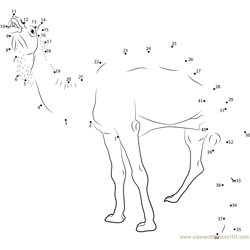 Marrecha Camel Dot to Dot Worksheet