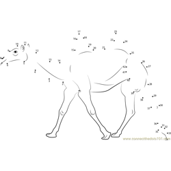 Two Humped Bactrian Camel Dot to Dot Worksheet