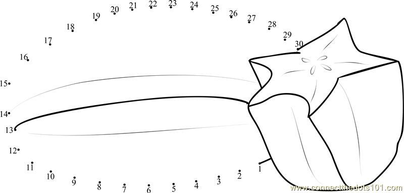Star Fruit Cut Half Dot To Dot Printable Worksheet