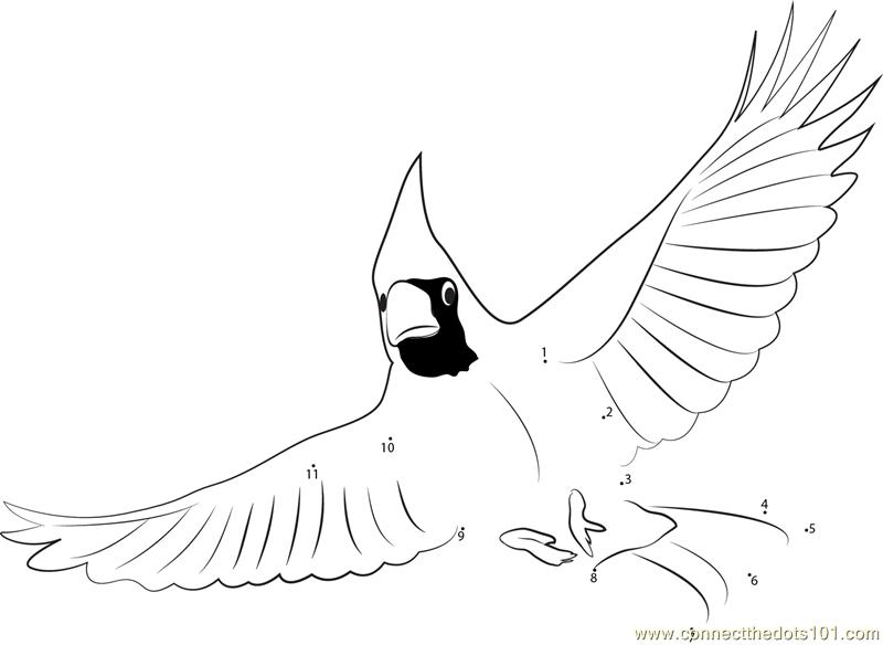Printable Coloring Page Cardinal
