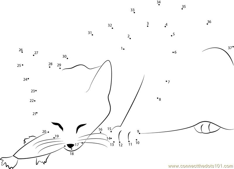 Cat Eats Fish Dot To Dot Printable Worksheet