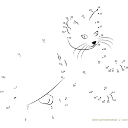 Cute Kitty Dot to Dot Worksheet