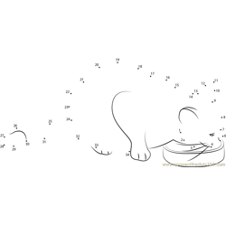 Silver tabby cat eating dry cat