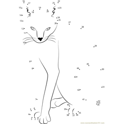 Wow cat Dot to Dot Worksheet