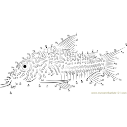 Threestripe corydoras Dot to Dot Worksheet