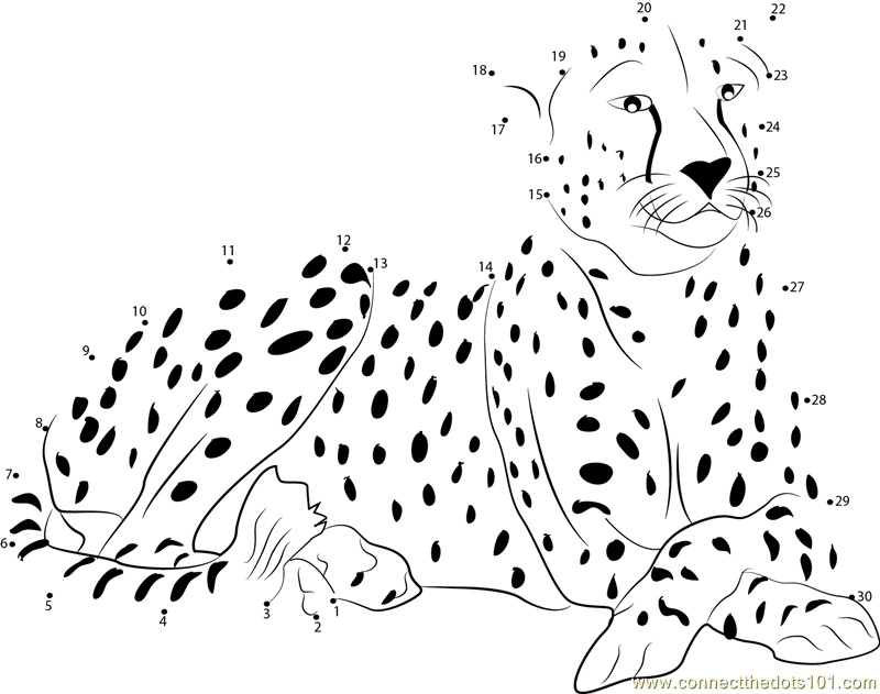 Cheetah Dot To Dot Printable Worksheet
