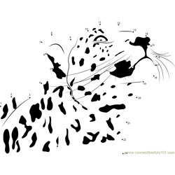 Cheetah Looking Up Dot to Dot Worksheet