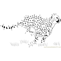Cheetah Speed Running Dot to Dot Worksheet