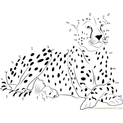 Cheetah Dot to Dot Worksheet