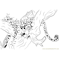 Sleeping Cheetah Dot to Dot Worksheet