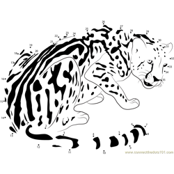 The King Cheetah Dot to Dot Worksheet