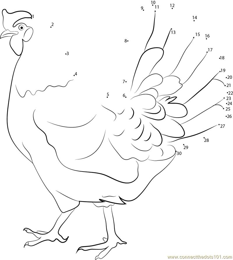 White Leghorn Hen Dot To Dot Printable Worksheet Connect
