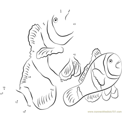 Three Banded Clownfish