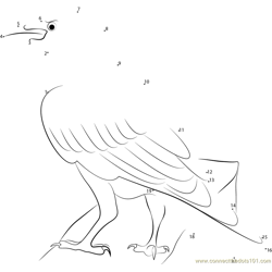 Juveniles Raven in Iceland Dot to Dot Worksheet