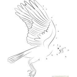 Mature Common Raven Dot to Dot Worksheet