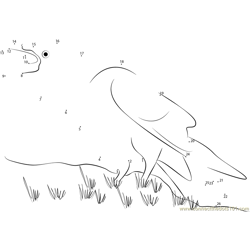 Raven Walking on Grass Dot to Dot Worksheet